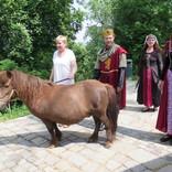 Příjezd Krále Karla IV. 25. 5. 2016