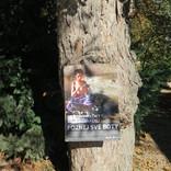 Poznej své boty – výstava na stromech
