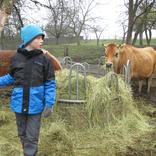 Chaloupky, farma Zašovice 17.11.2017