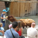 Zoo Praha 16.6.2018