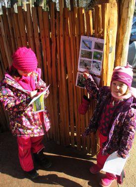 Zimní ptačí svět v Zoo 20. 2. 2016