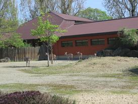 Zoo Dvůr Králové 22.4.2018